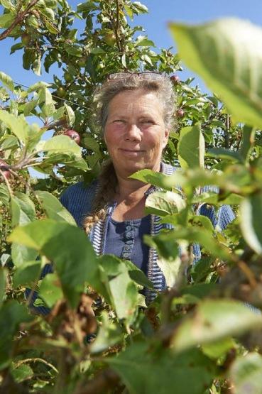 Mette Melgaard, Mosterei und Apfelplantage,  Insel Stryno