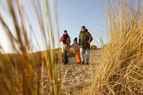 Duenenlandschaft bei Norddorf, Insel Amrum, Schleswig-Holstein, Winter 08/09, WebungPR