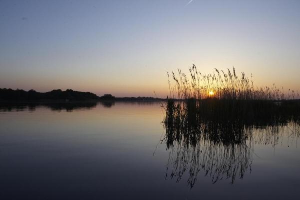 Breitling See, Insel Kiehnwerder, Brandenburg, Deutschland