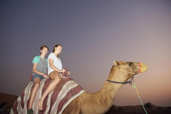 Kamelreiten, Camp, Desert Safari, Dubai, Vereinigte Arabische Emirate