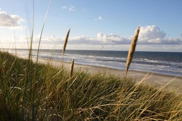 Nordkueste Vlieland, Wattenmeer, Friesland, Holland
