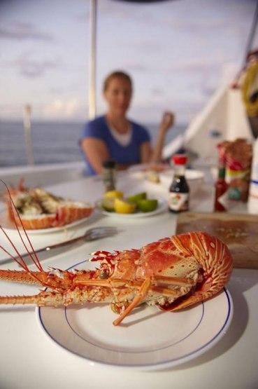 Languste, Qualie Beach, Nevis, Staat: St. Kitts und Nevis, Kleine Antillen