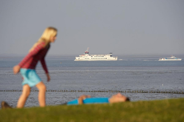 Wattenmeer bei Lauwersoog, Region Friesland