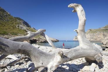 Bucht Cala Figuera, N-Kueste, Mallorca, Balearen