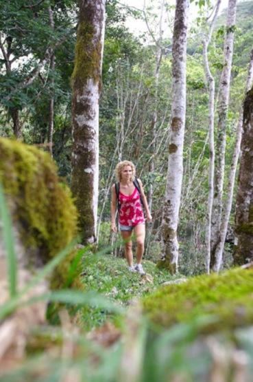 Dschungel bei Wasserfall Sarraméa, Grande Terre, Province Sud, Neukaledonien