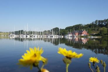 Hafen Dyvig Bro, Bucht Dyvig,  Insel Als, Daenemark, Ostsee