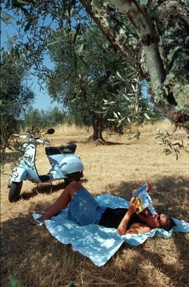 Weingut bei Siena, Toskana