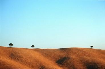 Landschaft der Crete, bei Siena, Toskana