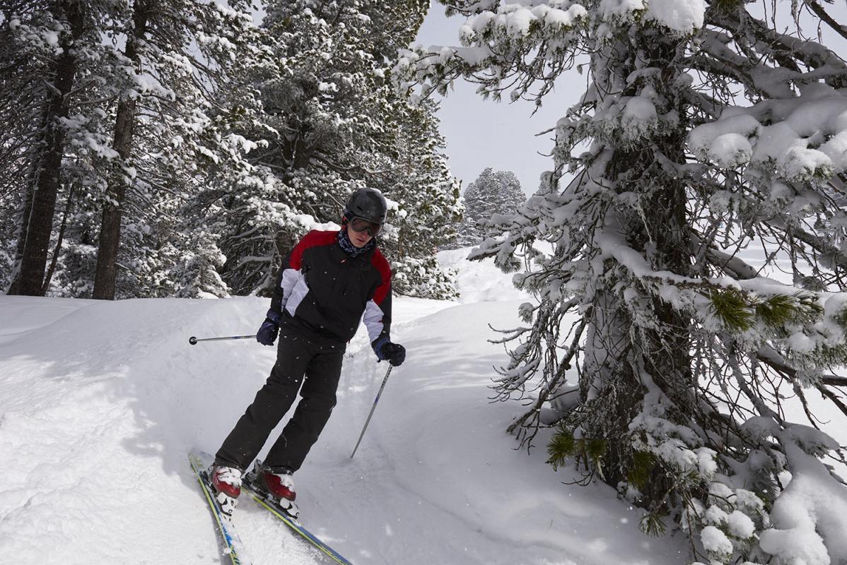 Skifahrer, Skiwanderweg, Skiweg, verschneite Baeume, Zilletalarena, Zillertal, Tirol, Oesterreich