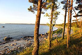 Dirhami, Region Laeaenemaa, Estland, Baltische Staaten