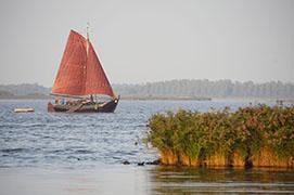 Lauwersmeer bei Oostmahorn, Region Friesland, Holland, 2009